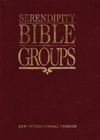 Serendipity Bible for Groups, NIV