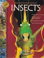 Creep Into the Busy World of Insects