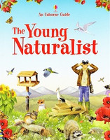 Young Naturalist, The