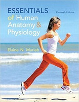Essentials of Human Anatomy & Physiology, 11th ed., text