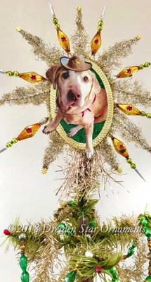 Reserved for Ryan – Beloved Dog in Oval Frame on Beaded Silver Star Topper