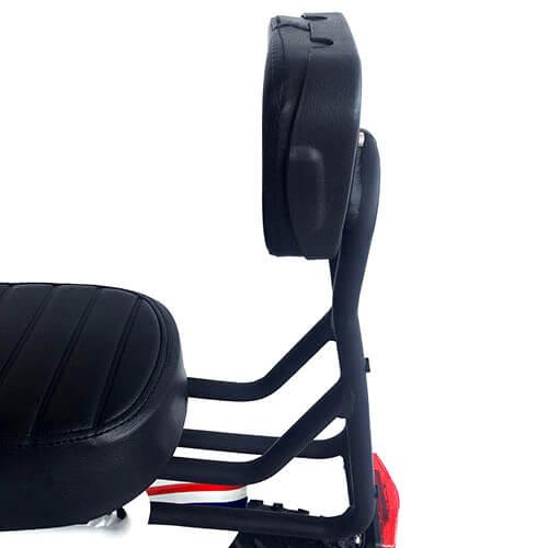 backrest.2.jpg