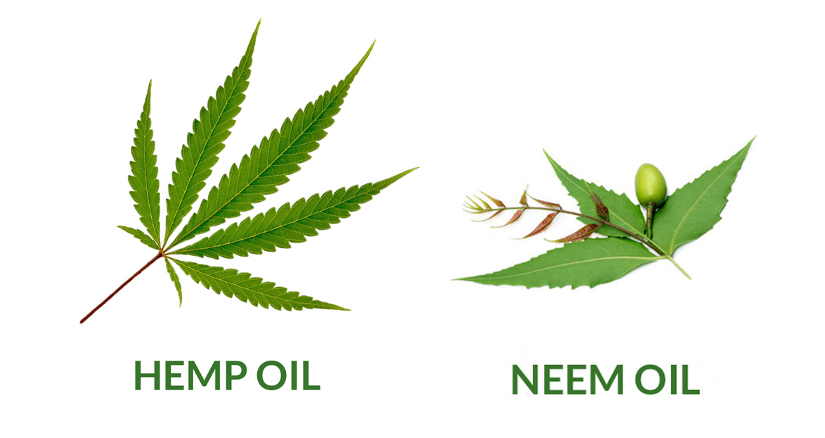 hemp-and-neem.jpg
