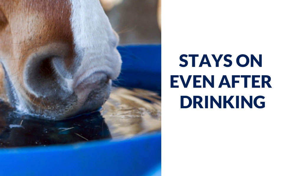 stays-on-even-after-drinking-blue-bucket-970-x-600-amazon.jpg
