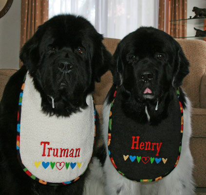 The boys modeling cream terry and black terry bibs