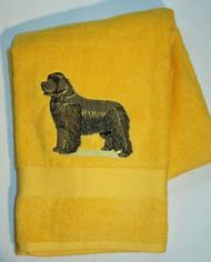 black newf on yellow bath towle
