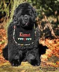 Kismet with Heart Border Bib