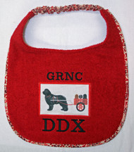 Custom Bib for Regional Club Draft Test