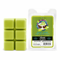 Beamer Candle Co. Smoke Killer Collection 2.4oz Wax Drops - 6-Count Pack - Skinny Dippin' Lime in the Coco Scent