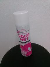 Safe Cans Aqua Net Hair Spray - Storage Compartment