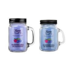 Blueberries Smell Like Raspberries 12oz & Mini 4oz Aromatic Home Series Candle Bundle