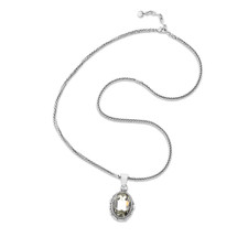 Dramatic Duo Necklace (N1953)