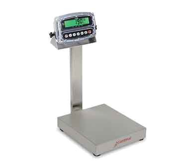 "Scale, digital, 14"" x 16"" (36cm x 41cm) platform, bench style, splashproof, 1"" polycarbonate LCD display, 150 lb/60 kg x .05 lb/.002 kg, registers: pounds, kilograms, grams and ounces, adjustable tilting mounting bracket, adjustable feet, 110 VAC power cord (included) or (6) ""C"" rechargeable batteries (not included), stainless steel base & column, Made in USA, NTEP, legal for trade (Category ""C"" item)"