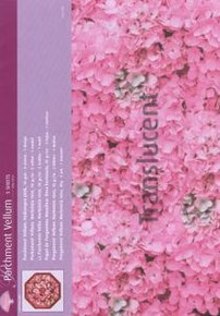 Pergamano Parchment Vellum- hydrangea PINK - 5 sheets