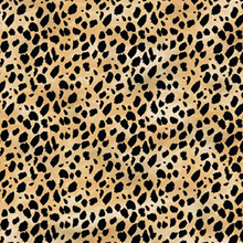 Hot Off the Press Leopard Paper -- Pack of 25 Sheets