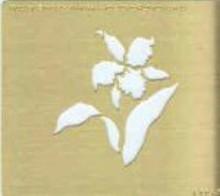 Square Stencil - Flower