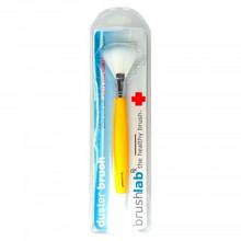 Fan Shaped Anti Bacterial Glitter Brush (Cosmetic Brush)