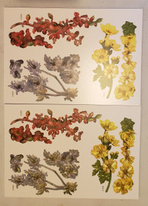 Tattered Lace 3D Decoupage- In The Field Set 1- Includes 3 dies: Cotoneaster (515040), Lavatera (515038), and Thistle (515033) w/ matching Charisma papers