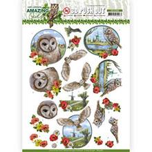 Amy Design 3D Push Out- Amazing Owls- Meadow Owls SB10488 Paper Tole 3-D Decoupage
