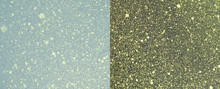 Cosmic Shimmer Airless Mister - Pearlescent Shimmering Gold