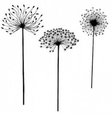 Lavinia Clear Stamps- Dandelions