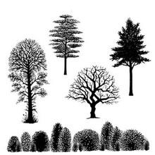 Lavinia Clear Stamps- Tree Scene