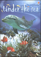 Beginner's Nature: Under the Sea