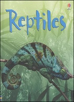 Beginner's Nature: Reptiles