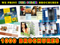 1000 Full Color BROCHURES 2 sides Gloss Finish FREE SHIPPING