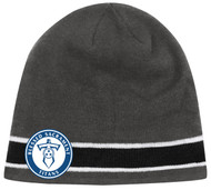 YOUTH  CS ONE STRIPED KNIT BEANIE -- GREY