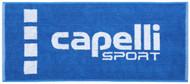 "COLTS NECK 31.5"" x 13""  COTTON JACQUARD TEAM TOWEL -- ROYAL BLUE WHITE"