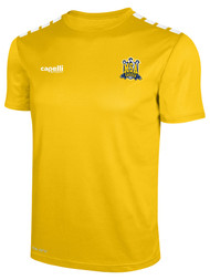 MSA TRAINING JERSEY -- GOLD