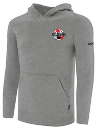NASA UNITED NUMBER HOODIE WITH EMBROIDERED LOGO ON SLEEVE-- LIGHT GREY