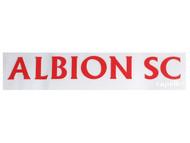 ALBION SC® SAN DIEGO PB CAR WINDOW DECAL --  BLUE BRIGHT RED