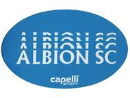 ALBION SC® SAN DIEGO PB BUMPER MAGNET -- BLUE WHITE