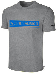 ALBION PORTLAND  BASICS TEE SHIRT W/ BLUE WE R ALBION BOX LOGO CENTER FRONT CHEST LIGHT HTH GREY