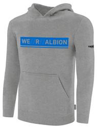 ALBION RIVERSIDE BASICS FLEECE PULLOVER HOODIE W/ BLUE WE R ALBION BOX LOGO CENTER FRONT CHEST LIGHT HTH GREY