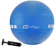 DELMARVA 55 CM EXERCISE BALL -- BLUE