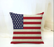 Pillow Cover, American Flag Arrival 1-20