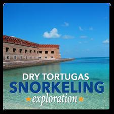 Dry Tortugas Snorkeling