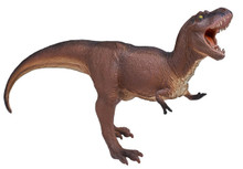 Carnegie Museum of Natural History Tyrannosaurus Rex