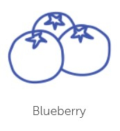 blueberry-flavour-2.jpg