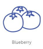 blueberry-flavour-3.jpg