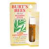 Burt's Bees Herbal Blemish Stick, 7.7 ml | NutriFarm.ca