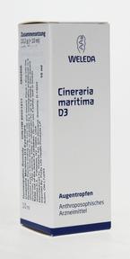 Weleda Cineraria Maritima D3 Eyedrops, 10 ml   NutriFarm.ca