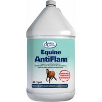 Omega Alpha Equine AntiFlam, 4 L | NutriFarm.ca