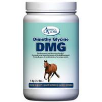 Omega Alpha Dimethyl Glycine DMG, 1 kg   NutriFarm.ca