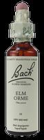 Bach Elm, 20 ml | NutriFarm.ca