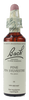 Bach Pine, 20 ml | NutriFarm.ca
