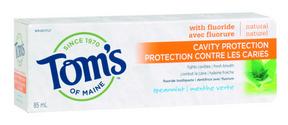 Tom's of Maine Cavity Protection Spearmint, 85 ml | NutriFarm.ca